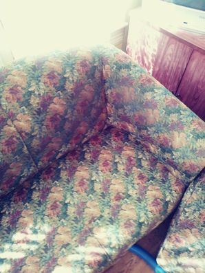 Sofa Cleaning in Round Rock, TX (1)