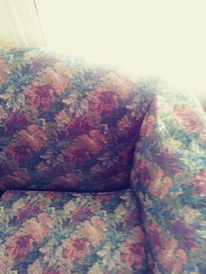 Sofa Cleaning in Round Rock, TX (2)