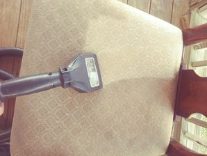 Before & After Upholstery Cleaning in Elgin, TX (4)