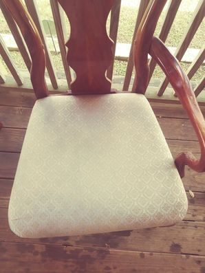 Before & After Upholstery Cleaning in Elgin, TX (6)