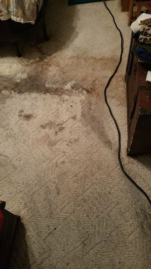 Before & After Carpet Cleaning in Round Rock, TX (3)
