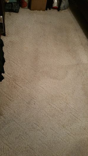 Before & After Carpet Cleaning in Round Rock, TX (2)