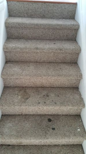 Before & After Carpet Stain Removal (1)