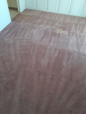 Before & After Carpet Cleaning in Elgin, TX (4)