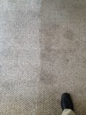 Carpet Cleaning by Clean Pro