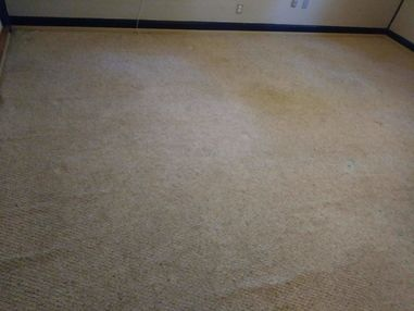 Before & After Carpet Cleaning in Elgin, TX (5)
