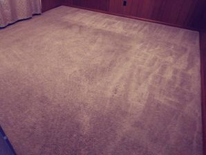 Before & After Carpet Cleaning in Giddings, TX (2)
