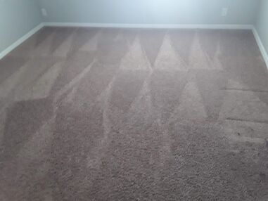 Before & After Carpet Cleaning in Pflugerville, TX (8)