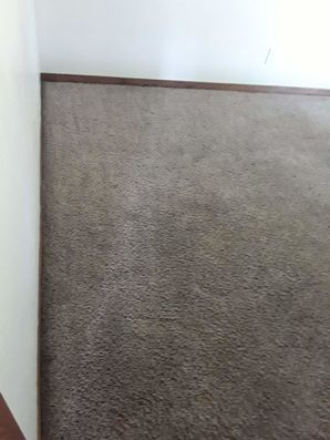 Before & After Carpet Cleaning in Taylor, TX (10)