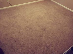 Before & After Carpet Cleaning in Giddings, TX (3)