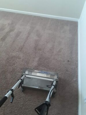 Before & After Carpet Cleaning in Pflugerville, TX (5)