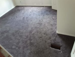 Before & After Construction Clean-Up, & Carpet Cleaning near Bastrop, TX (1)