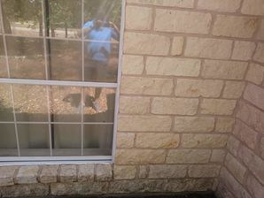 Before & After Concrete Wall in Elgin, TX (2)