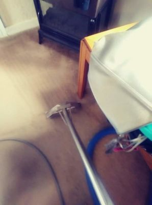 Before & After Carpet Cleaning in Bastrop, TX (1)