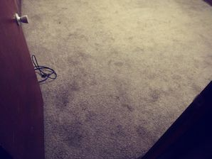 Before & After Carpet Cleaning in Giddings, TX (4)