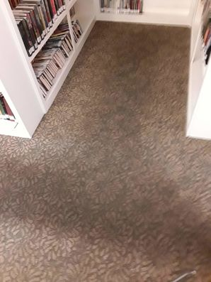 Garfield Public Library Carpet Cleaning in Garfield, TX (3)