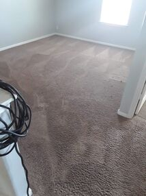 Before & After Carpet Cleaning in Pflugerville, TX (7)