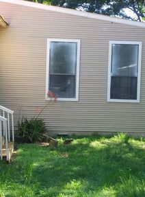 Before & After of Paint Over Spray Removal on Windows in Cedar Creek, TX (5)