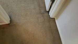 Before & After Carpet Stain & Mold Removal in Elgin (2)