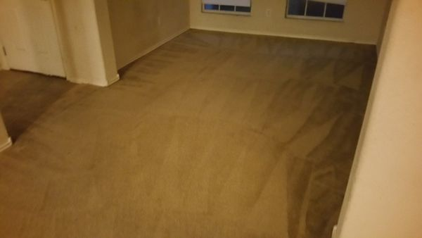 Before & After Deep Carpet Cleaning in Elgin (5)